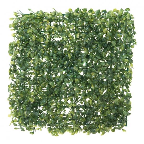Buchsbaumplatte, 25x25cm, Kunststoff
