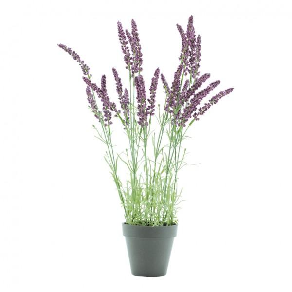 Lavendel im Topf, 48cm, Kunststoff