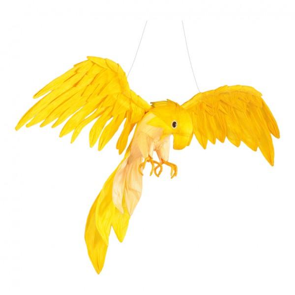 Papagei, 50x40cm, Papier