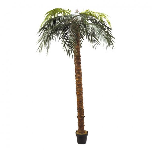 Phönix-Palme im Topf, 240cm, Kunststoff, Kunstseide
