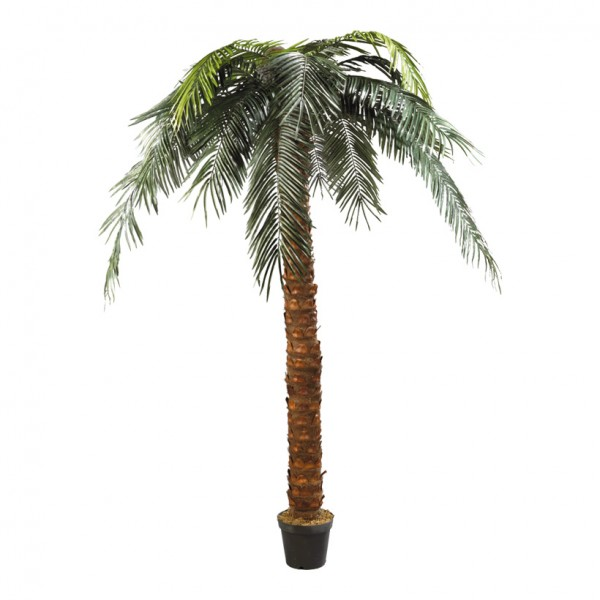 Phönix-Palme im Topf, 300cm, Kunststoff, Kunstseide