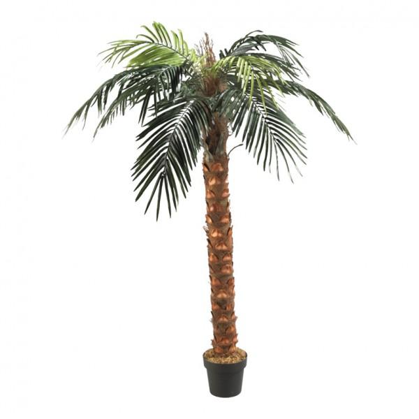 Phönix-Palme im Topf, 180cm, Kunststoff, Kunstseide