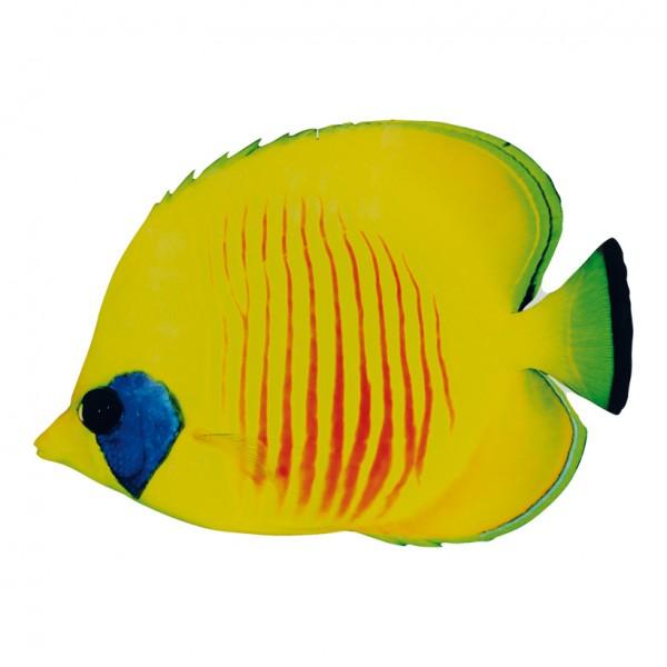 Tropenfisch, 50x30cm, beidseitig bedruckt, Holz, mit Aufhänger