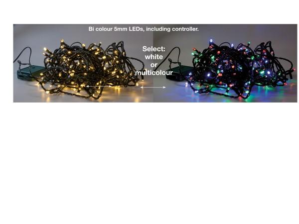 Bi-Colour Lichterkette
