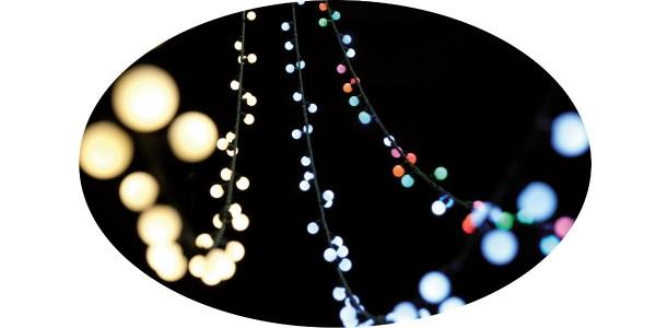 LED Lichterkette 'Berry Light Links' OUTDOOR